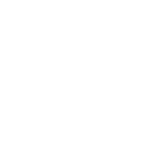 Tiny Fish Printing logo in white