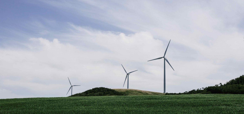 Photo of three windmills in a field